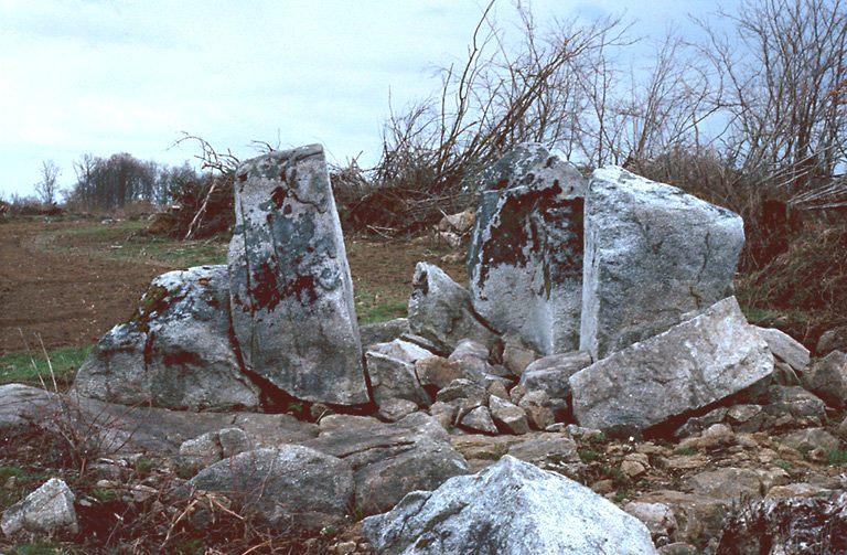 dolmen n° 2 du Mas-Neuf