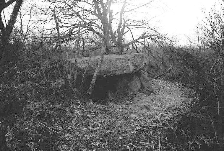 dolmen de la Pierre-Soupese
