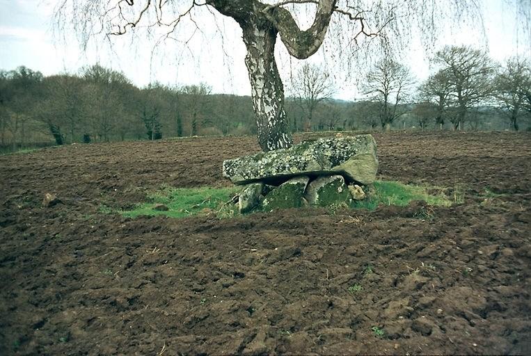 dolmen de l'Héritière dit la Pierre Levée