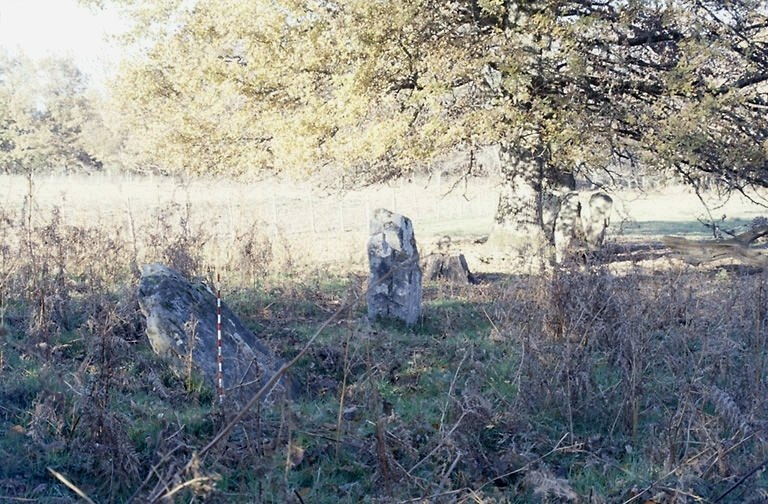 alignement de menhirs du Pré d'avant Clédié