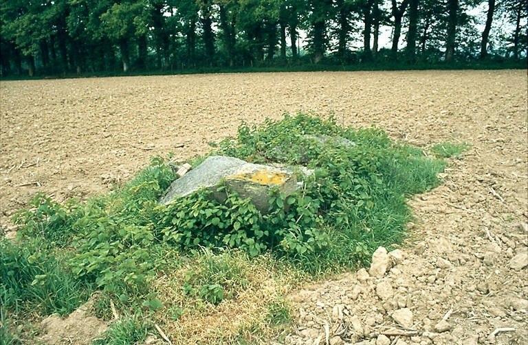 dolmen n° 1 de la Betoulle, dit la Pierre Levée