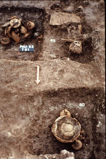 Vue des tombes à incinération, n° 80. 81. 82.
