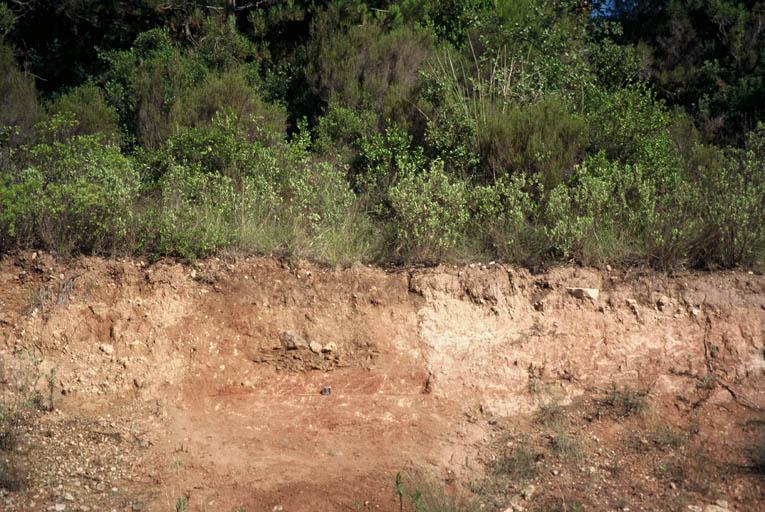 Vue en stratigraphie.