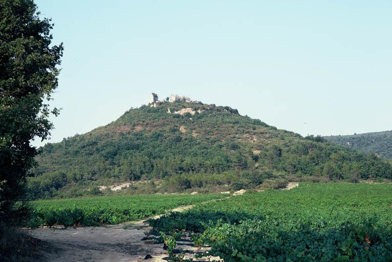 Vue du site prise de l'ouest.