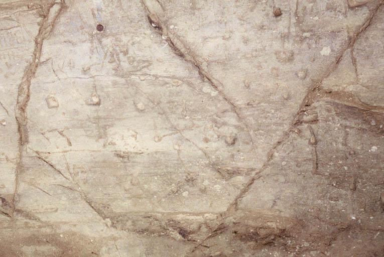 """Vue de la """"roche à cupules"""". Age du Bronze ?"""
