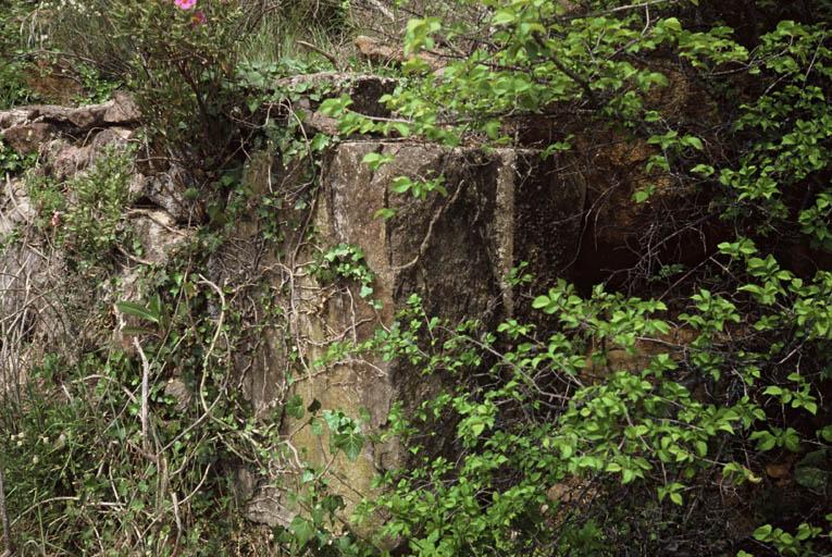 Vue des ruines du vieux moulin.