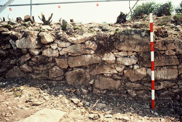 Vue des fouilles.