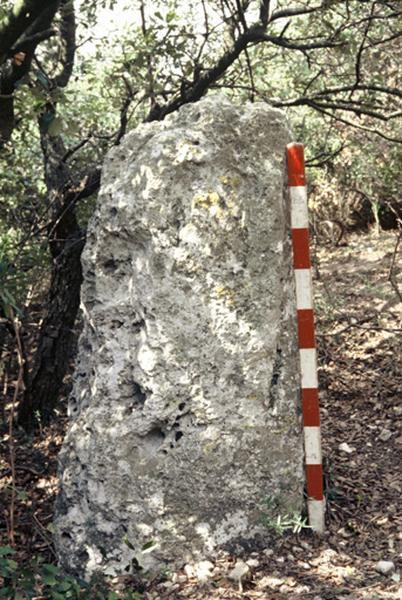 Menhir : pierre dressée