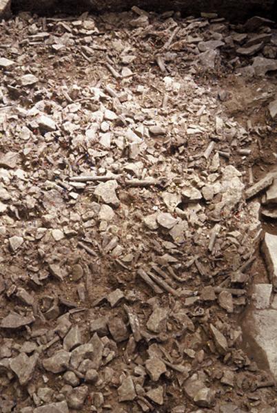 Dolmen : sépulture mégalithique