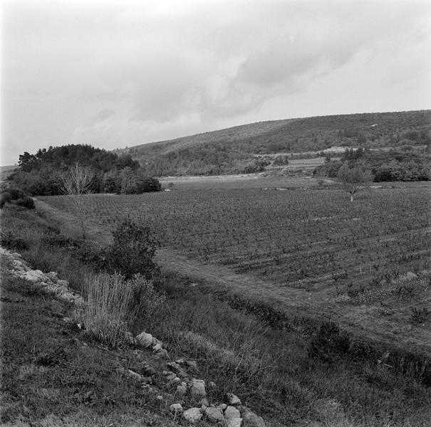 habitat : habitat rural rustique (relais routier ?)