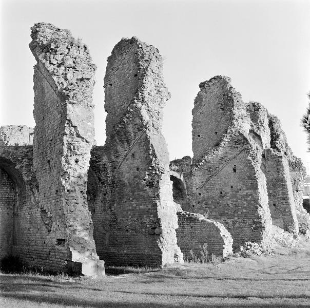 Amphithéâtre : cavea