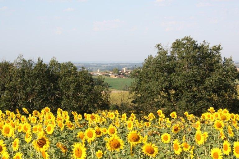 village de Gaudonville