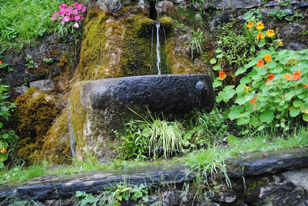Vasque de fonts baptismaux