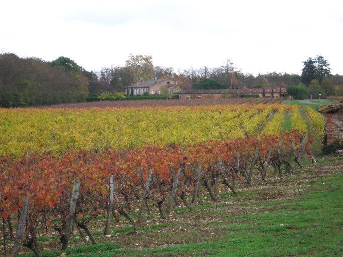 demeure, domaine viticole de Touni-les-Roses