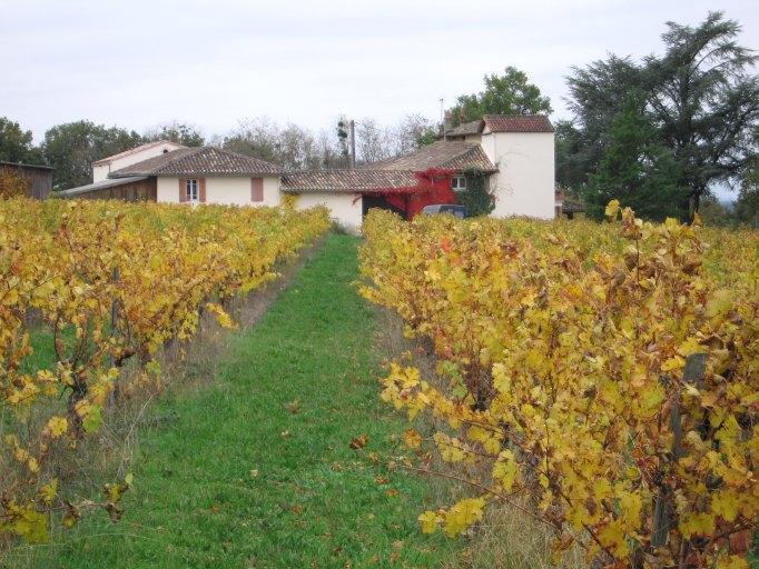 ferme, domaine viticole