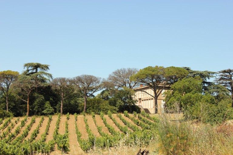 demeure, domaine viticole