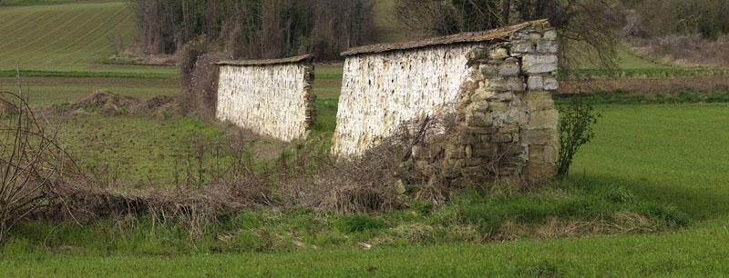 Ensemble agricole de murs à chasselas