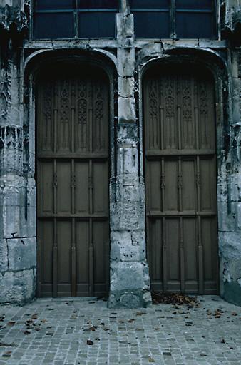 ensemble de 2 vantaux de porte