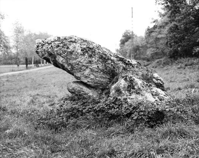 dolmen dit le Crapaud ou Pierre Gargouille