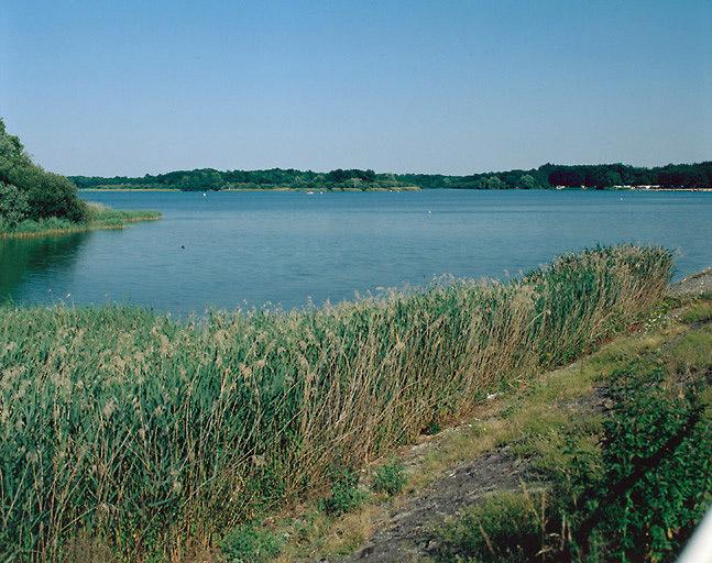 Réservoir dit étang du Puits (canal de la Sauldre)