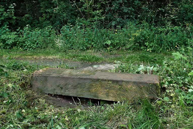 ponceau, pont des Freteurs (la Seille canalisée)