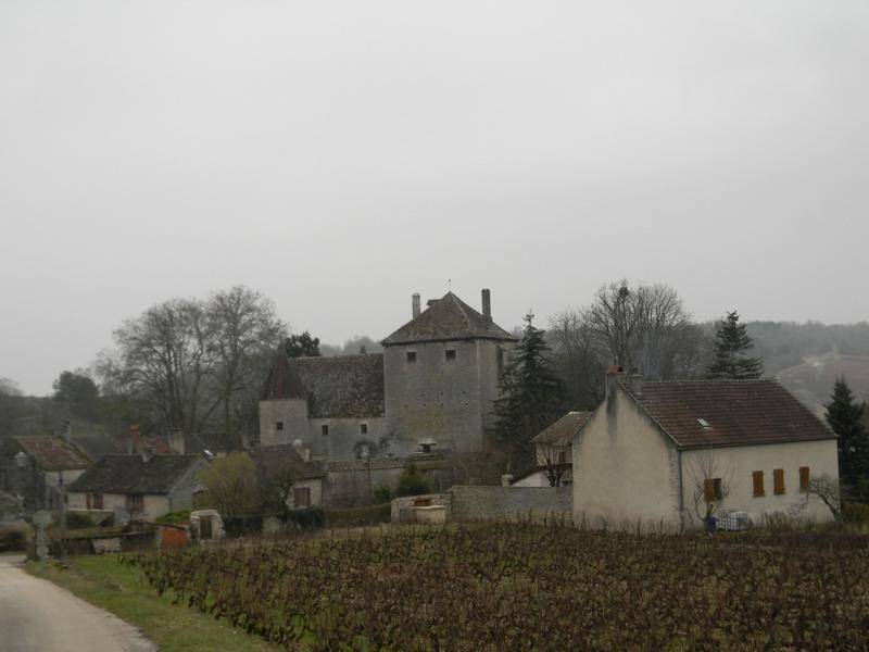 château fort, château (maison forte), château de Gamay