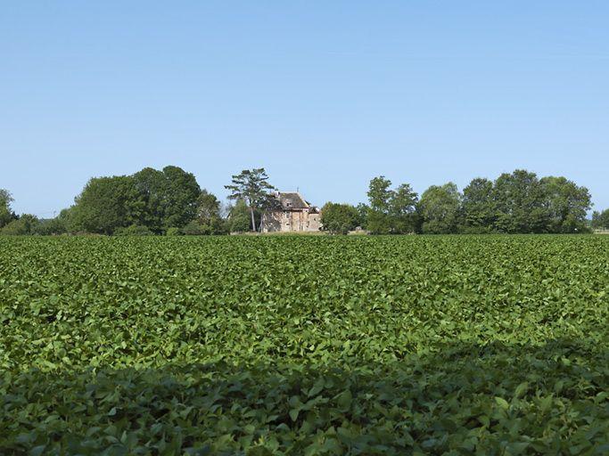 moulin des Batteurs (paysages du canal de Bourgogne)