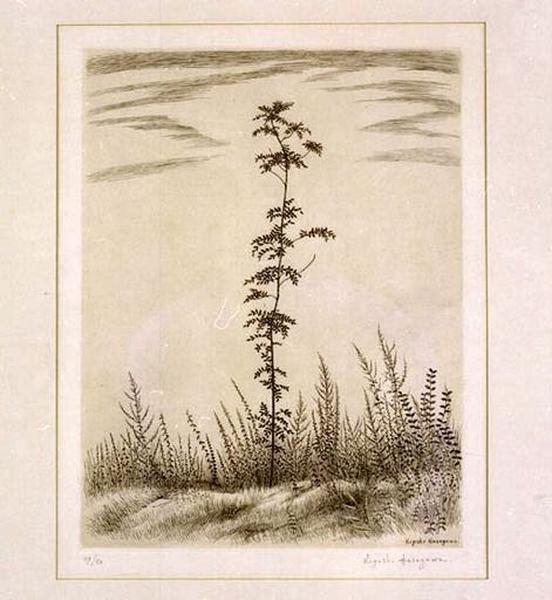 Estampe : Jeune arbre