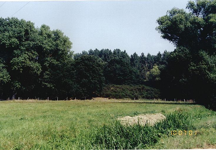 Ligne fortifiée, dite ligne de la Lauter ou ligne de Wissembourg