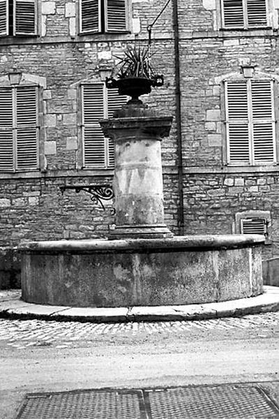 fontaine du Grand Pont