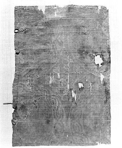 Fragment de pièce de tissu (n° 2)