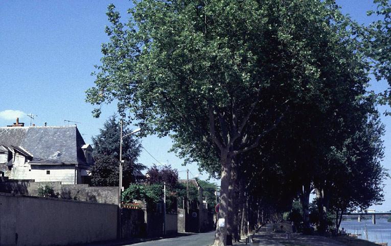 Village de Reculée