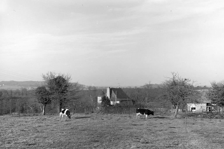 Manoir, la Pungerais (Pléchâtel)