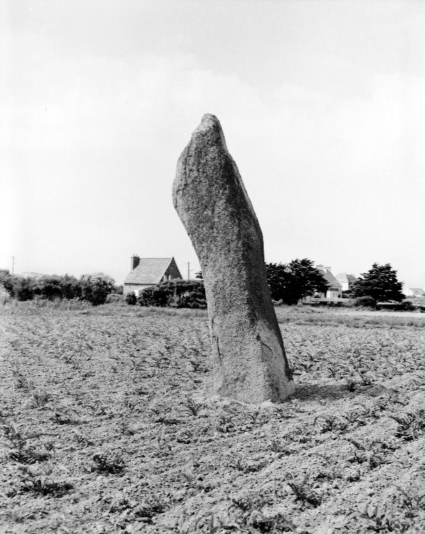 Menhir, Porz Ar Streat (Plouescat)