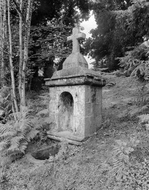 Fontaine de dévotion Sainte-Brigitte, Moulin du Châtel (Plounévez-Lochrist)