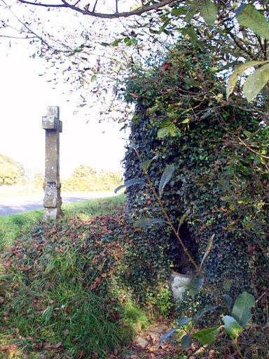 Croix de chemin, la Dibois (Baguer-Morvan)