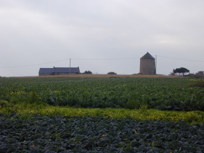 Moulin, Moulin de la Masse (Saint-Coulomb)