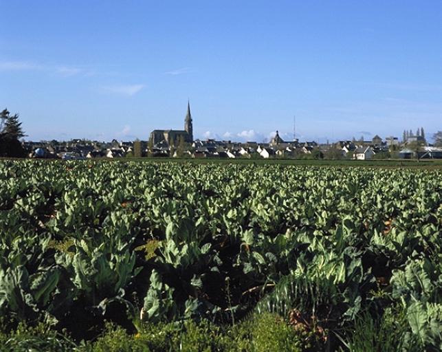 Village de Saint-Méloir-des-Ondes