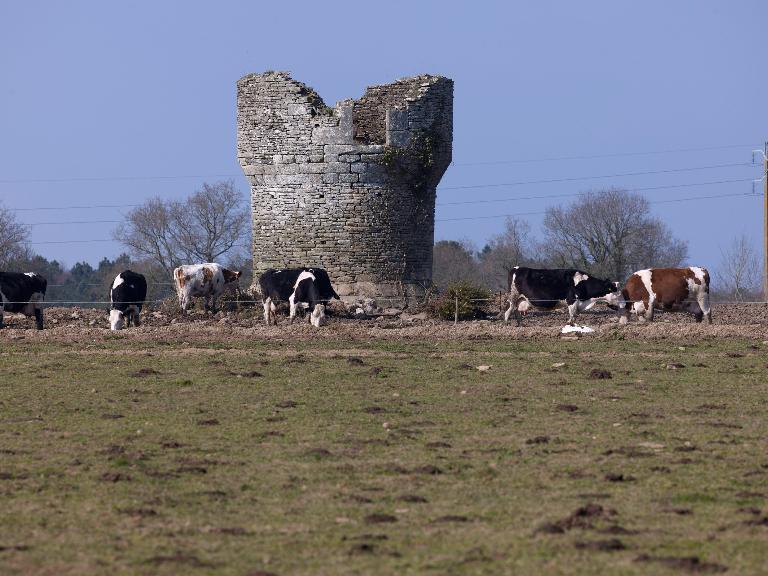 Ancien moulin à vent, dit le Moulin Rougé ou moulin de Talhouët (Pluherlin)