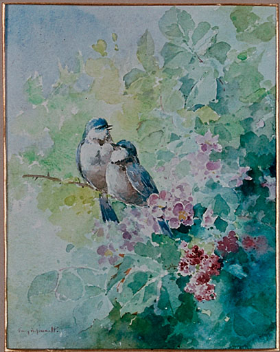 Dessin : oiseaux
