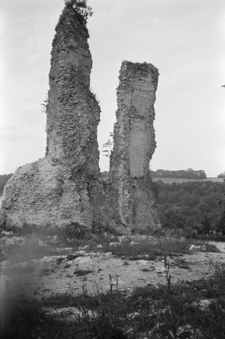 Château fort dit les Tours de Moissaguel