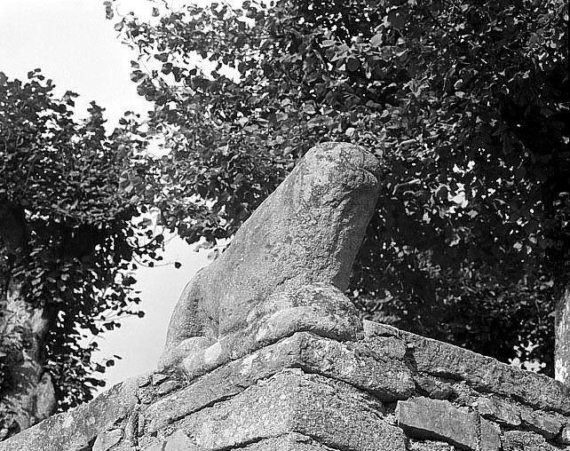Statue (grandeur nature) : Lion
