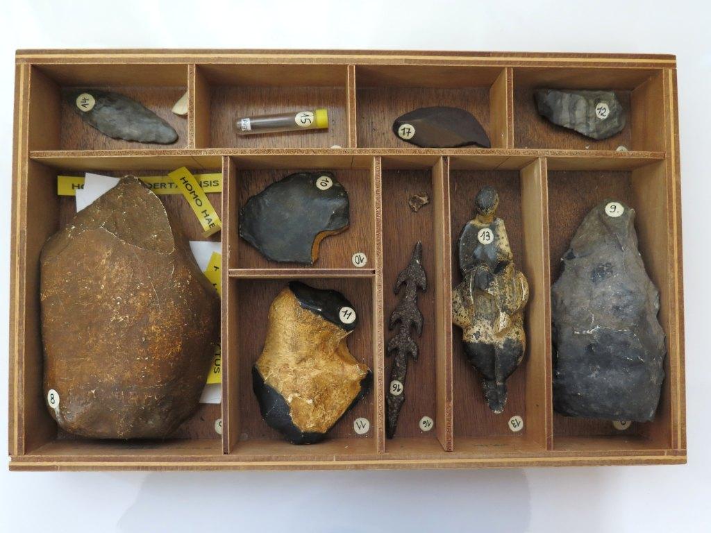 Ensemble d'objets de représentation scientifique et pédagogique préhistorique