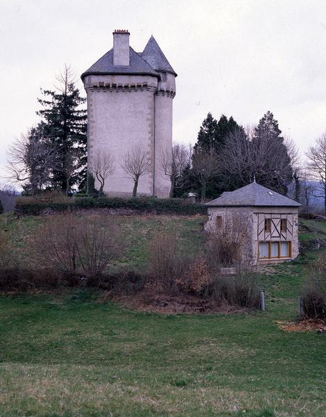 Château fort ; château dit château du Châtelet