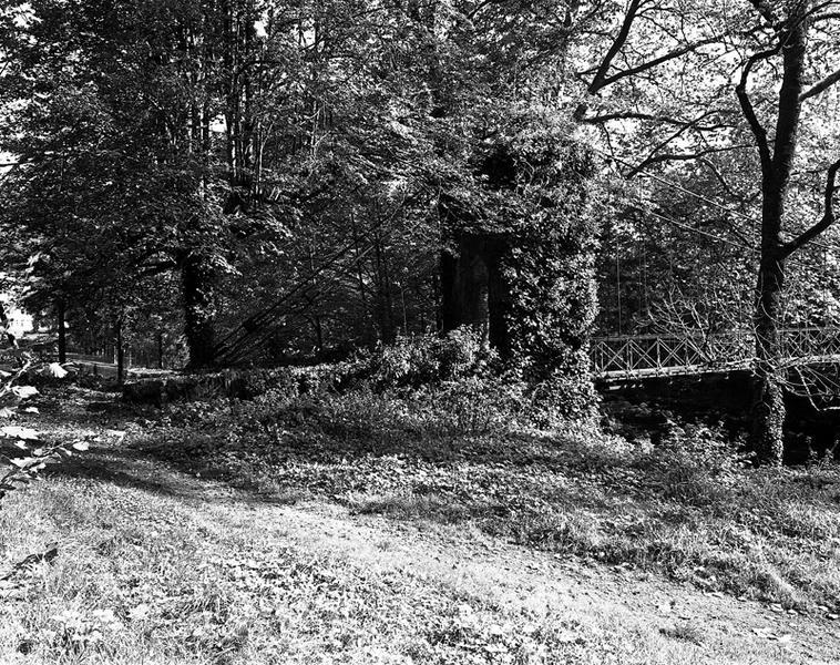 Pont (pont suspendu)
