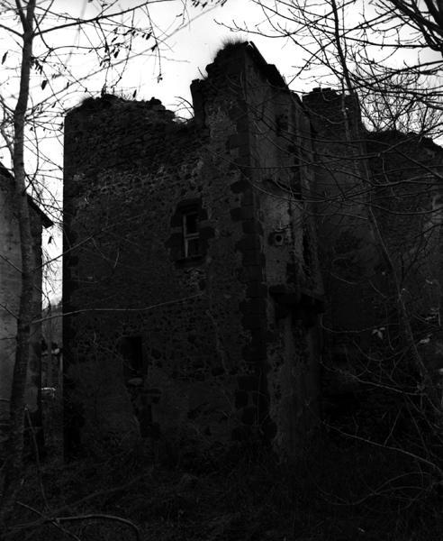 Château dit château de Rioux