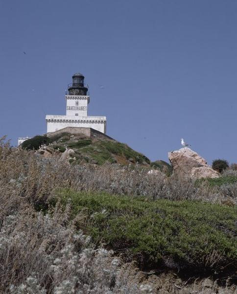 phare des Sanguinaires