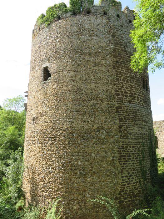 Ruines de la tour de Bois-Ruffin: Vue générale