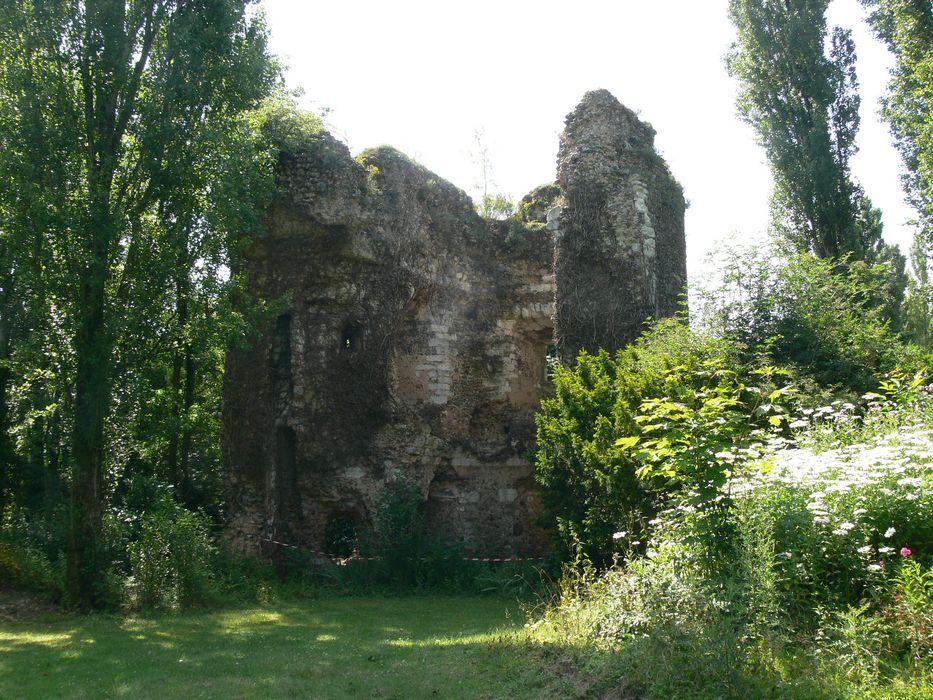 Restes de l'ancien château: Vue partielle des ruines
