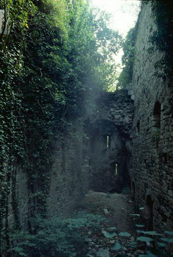 Château de Scey (également sur commune de Cléron)